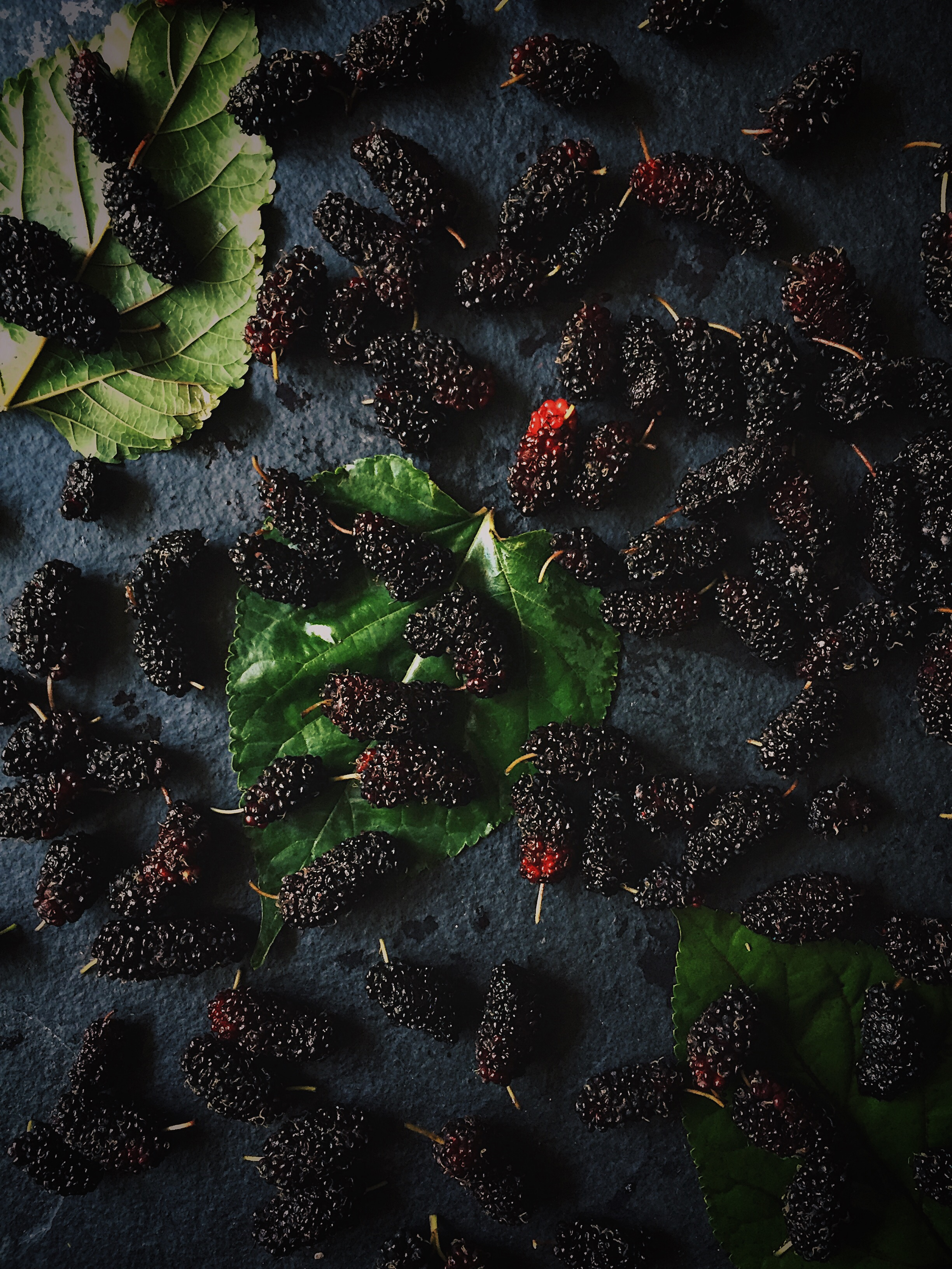 Three Ways With Mulberries